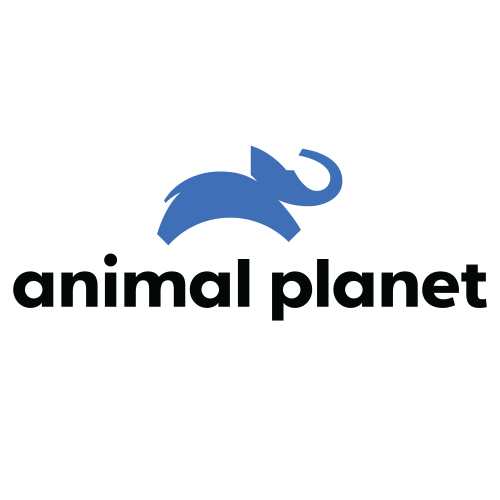 Animal Planet Channel Logo